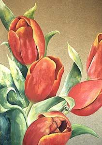 Tulips 1 - Carolina Alotus (733)