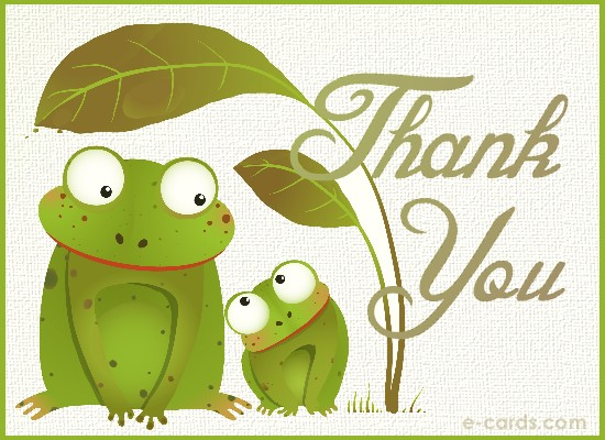 Thank You Frogs -  (7120015004)