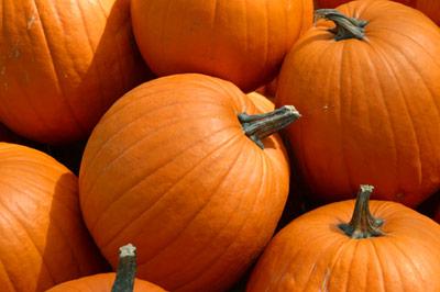 Big Pumpkin - Oscar Cintronmarina (1558930575)