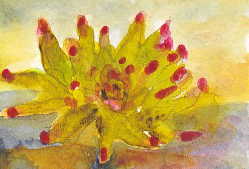 Flowering Cactus - Penny Gutman (6119859037)